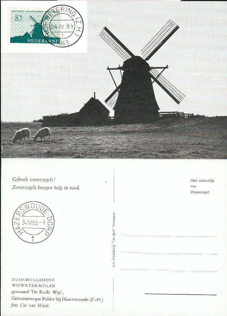 fw66-3.jpg